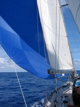 Gennaker sailing