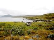 Landscape of Lapland.