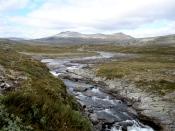 Vuomakasjoki