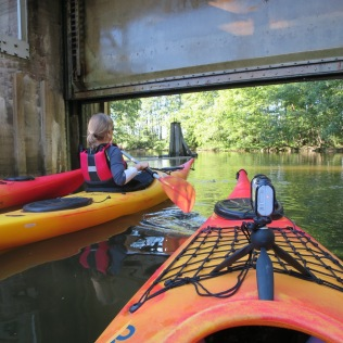 paddling_blogg - 1